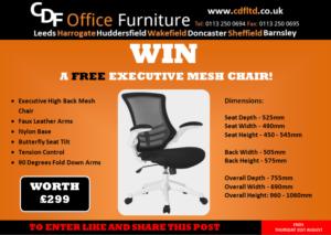 executive-mesh-giveaway
