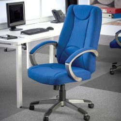 Fabric Managers Chairs