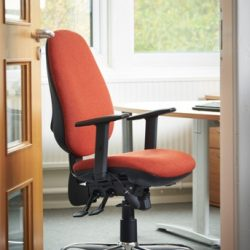 Back Care & Posture Chairs